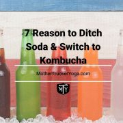 7 reasons to ditch soda and switch to kombusha mother trucker yoga blog